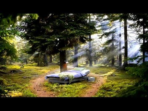 3 HOURS of Relaxing Music: Soft & Sleep Music, Spa, Background Music ☯3 - YouTube