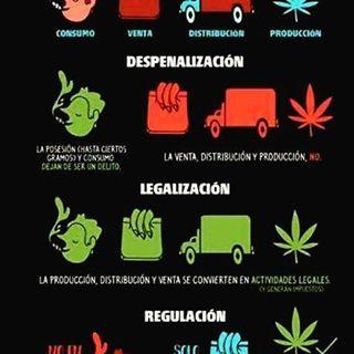 Conoces la diferencia entre #despenalizacion , #legalizacion y #regulacion ? #politica de #drogas #infographic #infografia