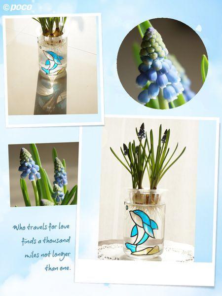 日本玻璃拼貼作品~植栽玻璃罐~