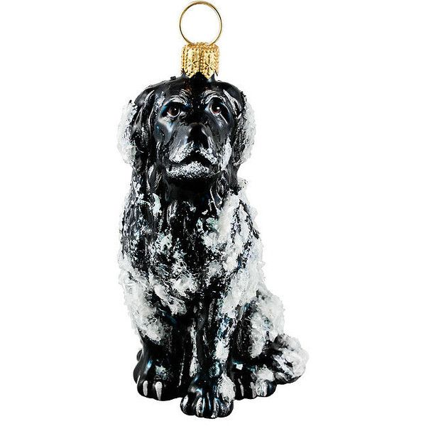 Snowy Newfoundland Ornament ($60) ❤ liked on Polyvore featuring home, home decor, holiday decorations, black ornaments, european home decor, frontgate ornaments, glass ornaments and joy ornament