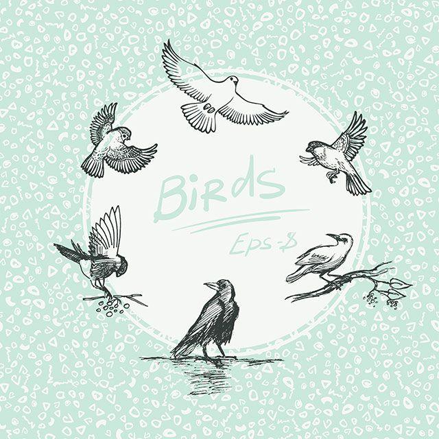 Set of sketch bird. Vector illustration