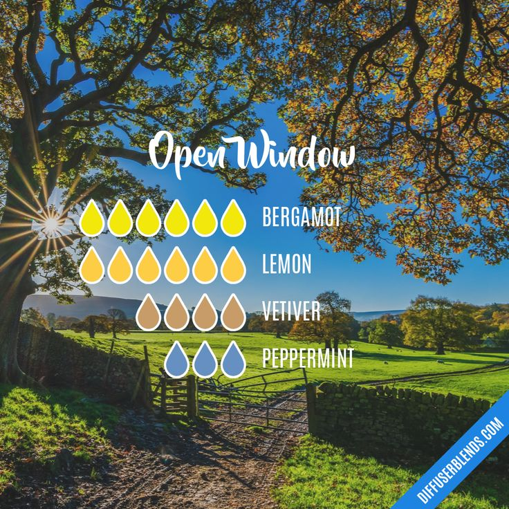 Open Window — Essential Oil Diffuser Blend
