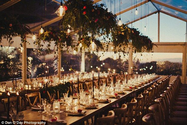 Look up:Guests are welcomed into receptions beneath a canopy of branches strung with fairly lights, a ceiling of blooms, or a hanging garden installation (image by Dan O'Day Photography)