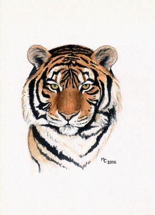 """Aquarelle """"tête de tigre"""" par Savousepate - http://www.alittlemarket.com/peintures/aquarelle_tete_de_tigre_-5721203.html"""