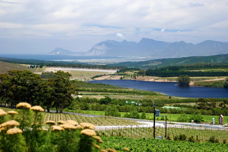 A view from the Lookout Restaurant Hermanus towards Klienmond, South Africa.