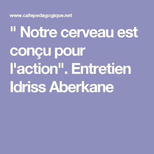 """"""" Notre cerveau est conçu pour l'action"""". Entretien Idriss Aberkane"""