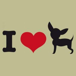 I love my chihuahua.