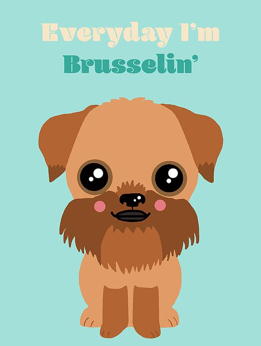 Brussels Griffon by Nicole Wilson