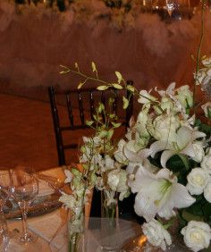 january-wedding-2010-5