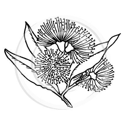 Image result for pohutukawa art