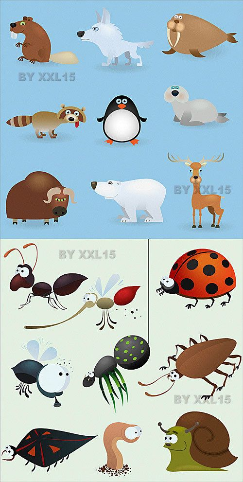 Забавные животные и насекомые в векторе   Cartoon animals and insects vector