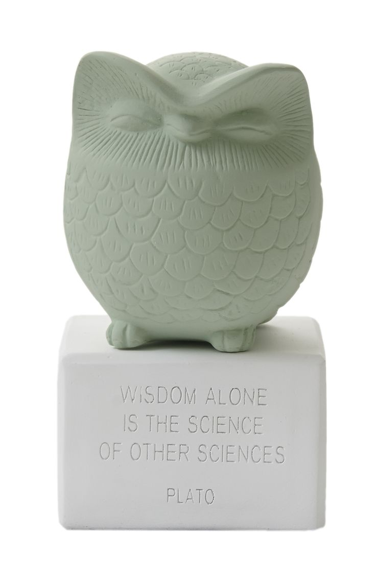 "Owl Medium: ""Wisdom alone is the science of all sciences. Material: Ceramine. Color: Vintage Green."