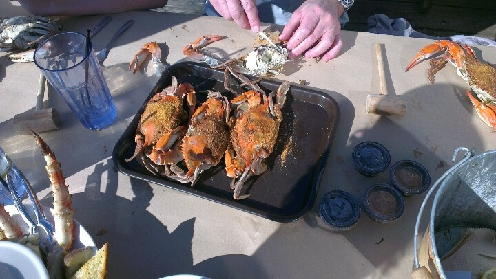 Having Blue Crabs in Chesapeake Bay in bright sunny daylight