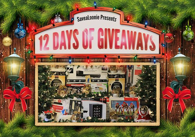 www.savealoonie.com 12 Days of Giveaways!