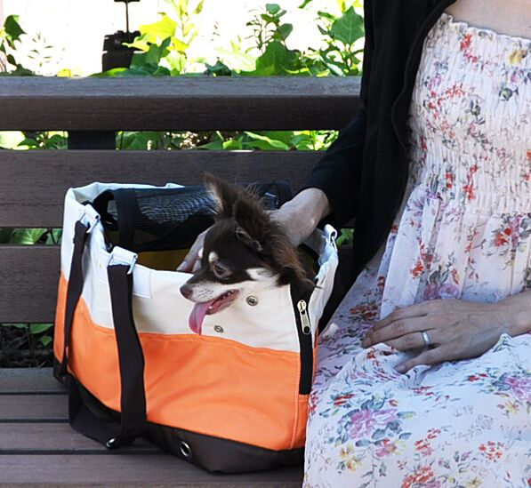 Pet Supplies Dog Bag Cat Bag Dog Carrier Tote Luggage Bag Traveling Portable Shoulder Bag Convenient Fashion 1PC