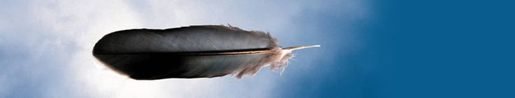 Michael Riley, exhibition detail and education/teaching resources DETAIL: Michael RILEY, 'Untitled from the series cloud [feather]' Cloud series Feather 2000, printed 2005 Photograph chromogenic pigment pri...