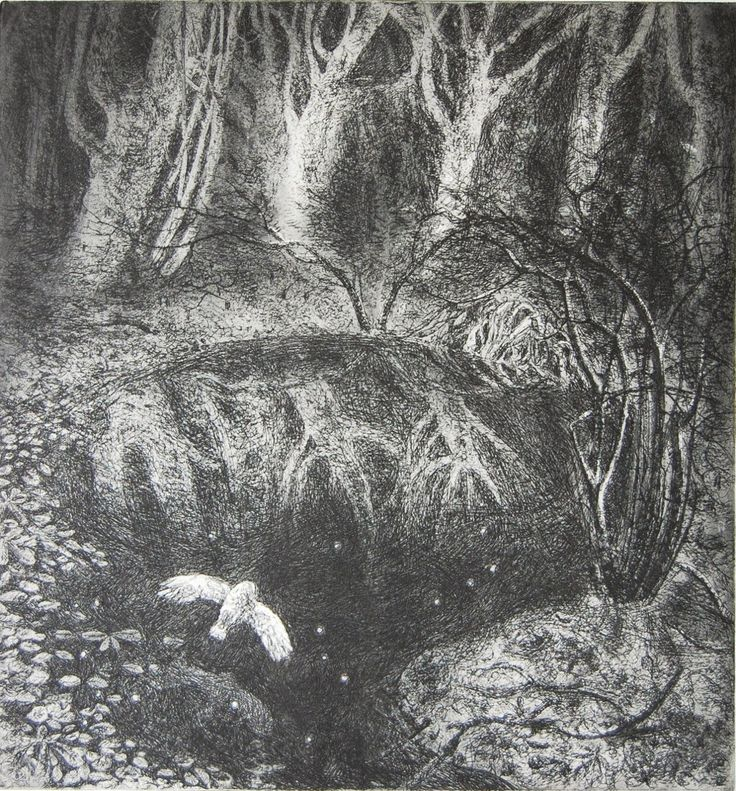 Leaves and stars  Hard ground and spit bite etching  Edition of 150  27 x 29cm