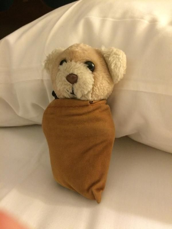Lost on 29 Aug. 2015 @ San Miguel, Lima, Peru. Hello everyone, this is a long shot but thought I would try anyway. While on vacation recently, my fiancee and I lost our travel companion, Hugo. He was bearnapped when her bag was stolen from us w... Visit: https://whiteboomerang.com/lostteddy/msg/fl7eji (Posted by Sean on 22 Sep. 2015)