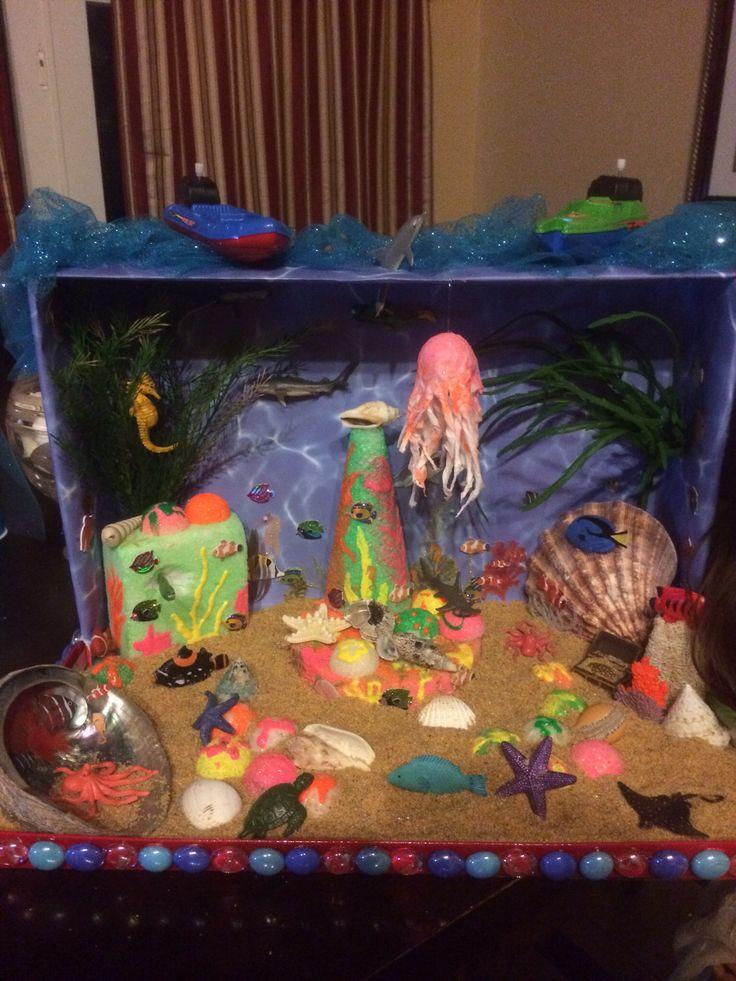 top ocean habitat diorama - photo #5