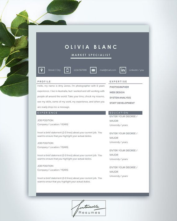 resume template 3 page cv template cover by fortunelleresumes - Template Of A Resume