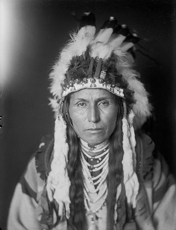 Вождь Albert Waters, Не Персе. Член делегации Не Персе 1906 года.