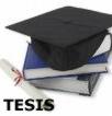 Una tesis de doctorado es un trabajo de una extensión media que varía entre las cien y las cuatrocientas páginas, en el cual el estudiante trata un problema referente a los estudios en que quiere doctorarse.