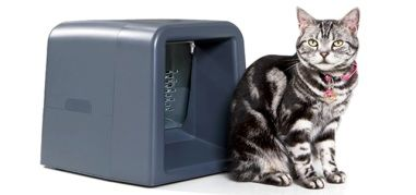 RFID Opens Doors For Cats and Dogs at Home: Cats, Ideas, Pets, Gatefeeder, Products, Special Diet, Animal