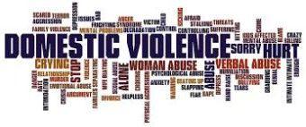 """Podle Plánu jsou domácí násilí """"veškeré akty fyzického, sexuálního, psychického, ekonomického či dalších forem násilí, k němuž dochází v rodině nebo v domácnosti anebo mezi bývalými či stávajícími manžely, partnery či osobami blízkými, bez ohledu na to, zda násilná osoba sdílí nebo sdílela společnou domácnost s osobou ohroženou tímto násilím"""".  #VAW  #NAP"""