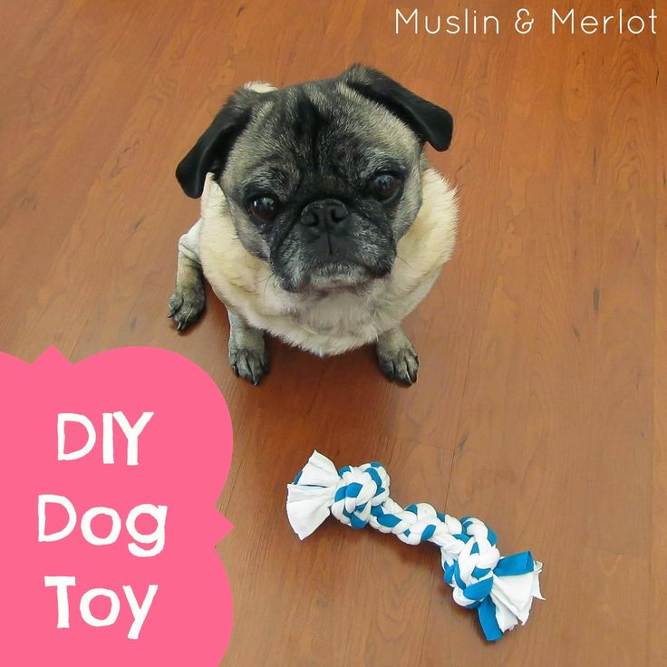 15 best images about t shirts crafts on pinterest for T shirt dog toy