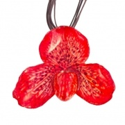 Red-Lady Slipper Necklace $55