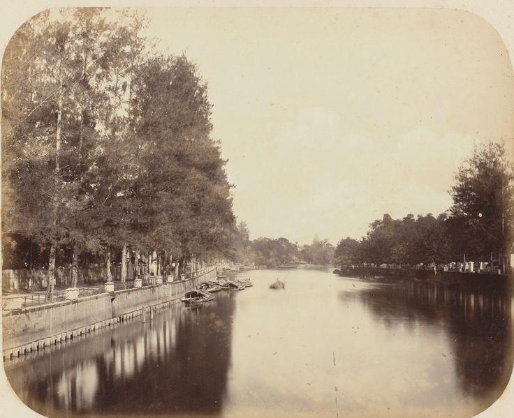Album of the Surabaya Association of Sugar Producers 1876: humus