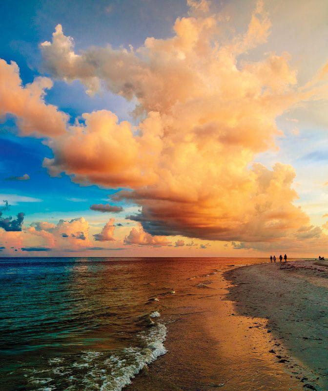 Sanibel Beach: 350 Best Images About Sanibel & Captiva Beaches On