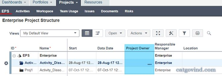Project Owner field between Primavera P6 EPPM vs P6 Professional for EPPM