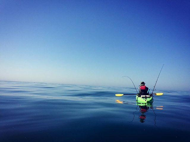 Celebrated Earth Day 2017 in style by heading out to sea on kayaks in search of yellowtail. Caught plenty of green mackerel but it ended up feeding the sea lions instead! A beautiful day on the water complete with dolphins swimming under the yaks! . . . . . . . . . #outdoormultisport #kayakcamping #kayak #adventure #multisport #outdoors #kayaking #wheelstowaves #kayakfishing #yakfishing #beach #camping #explore #lajolla #fishing #fish #yellowtail #kayakangler #nature #localfood #localcaught…