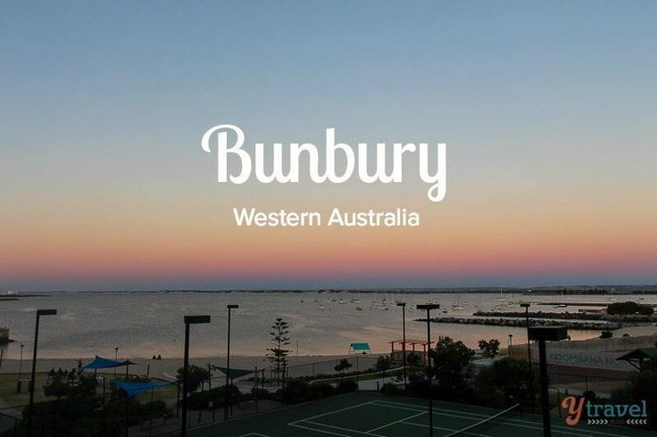 Wild dolphins, wine tasting, cafes, breweries, gnomes, friendly people - Bunbury makes for a nice getaway from Perth.