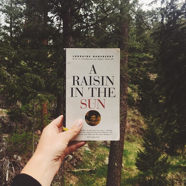 """""""When you starts measuring somebody measure him right child measure him right. Make sure you done taken into account what hills and valleys he come through before he got to wherever he is."""" A Raisin in the Sun / Lorraine Hansberry"""