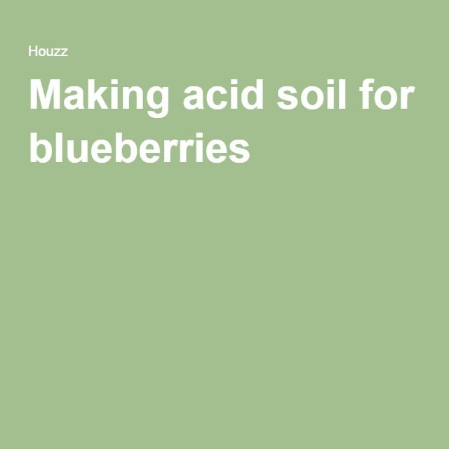 how to make soil more acidic for blueberries