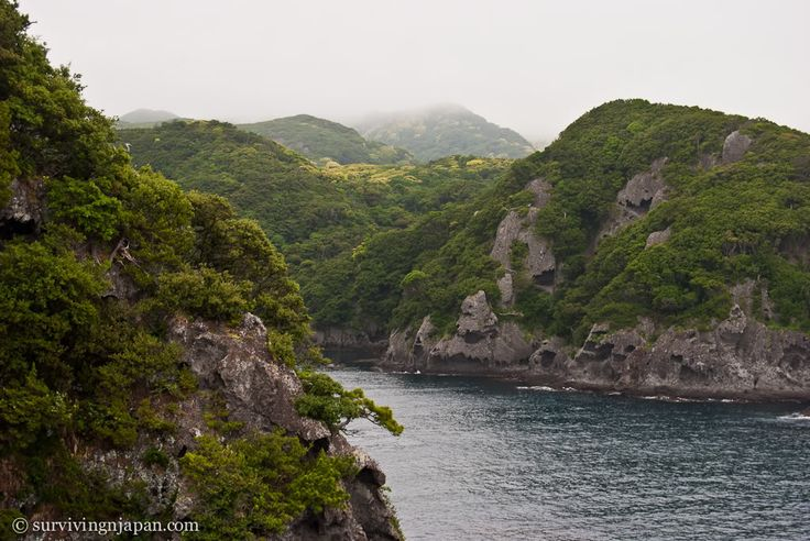 Traveling the Izu Peninsula   Surviving in Japan: (without much Japanese)