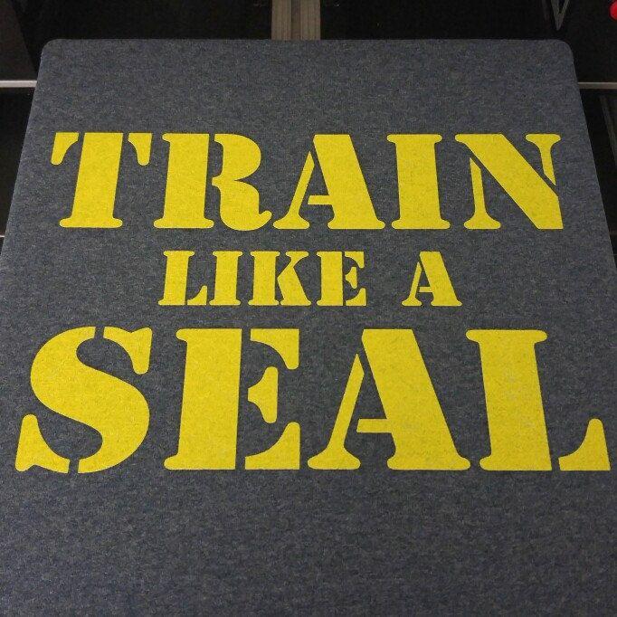 Train like a Navy Seal Tshirt 💪😎