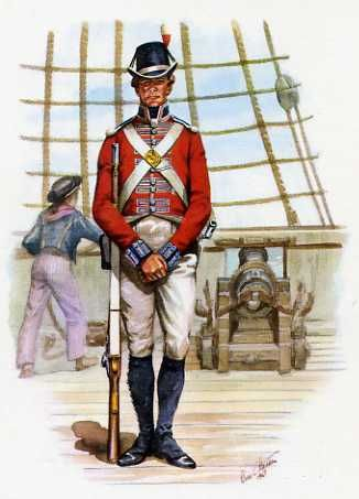 A Private Of The Royal Marines 1805.                                                                                                                                                     More