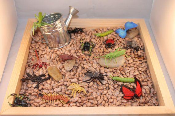 Bug/ Garden Sensory Bin