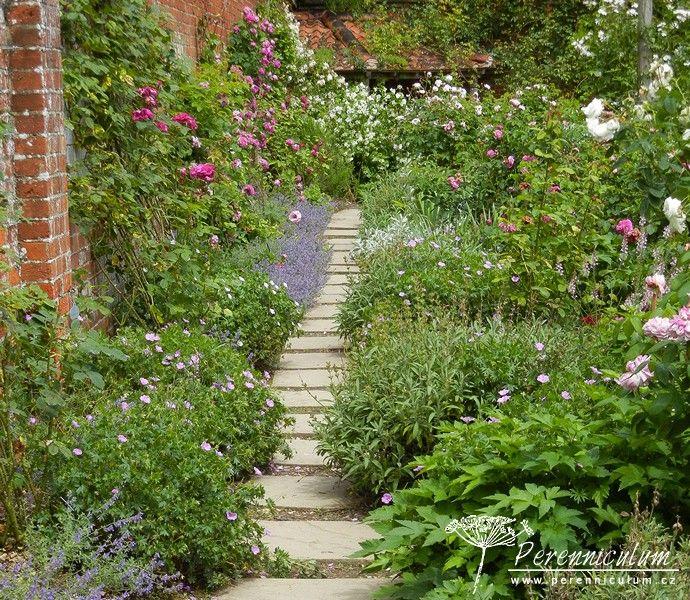Mottisfont Abbey Gardens - Úzký chodníček podél obvodové cihlové zdi vede návštěvníky blíž k popínavým růžím na stěně.