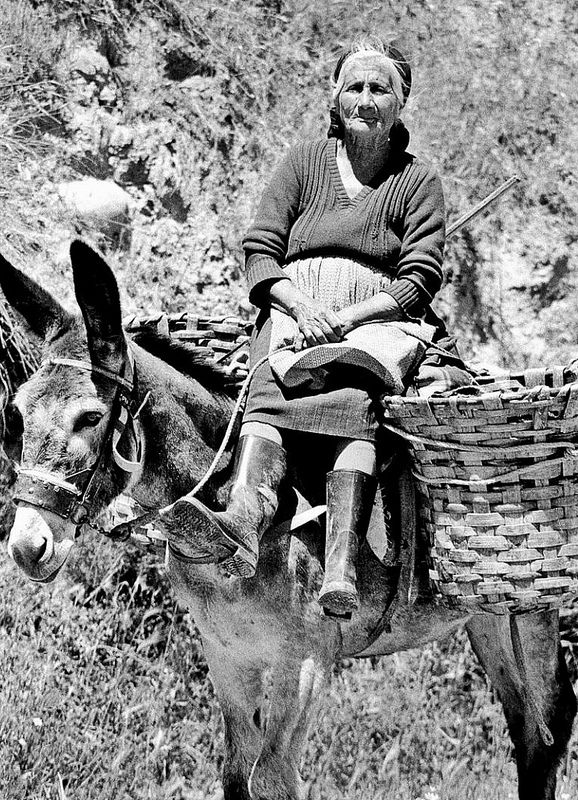 Italy, donkey, æsel, cute, old lady, female, wrinckles, hands, lines of Life, beauty, photo b/w.