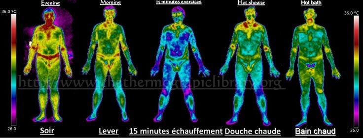 Thermography variation according to activities during the day. This demonstrates that thermal print of people is an evolving schema.  Variation de l'empreinte thermique le long de la journée et selon l'activité.