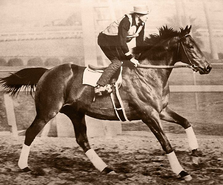 Seabiscuit, 1938 Horse of the Year