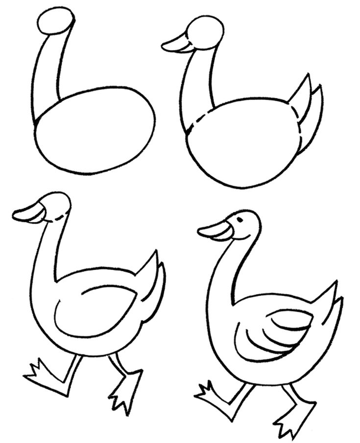 free clip arts how to draw animals clipart