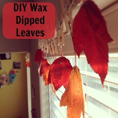 Easy-to-Make Wax-Dipped Leaves for a Fun Fall Family Craft (VIDEO) | The Stir