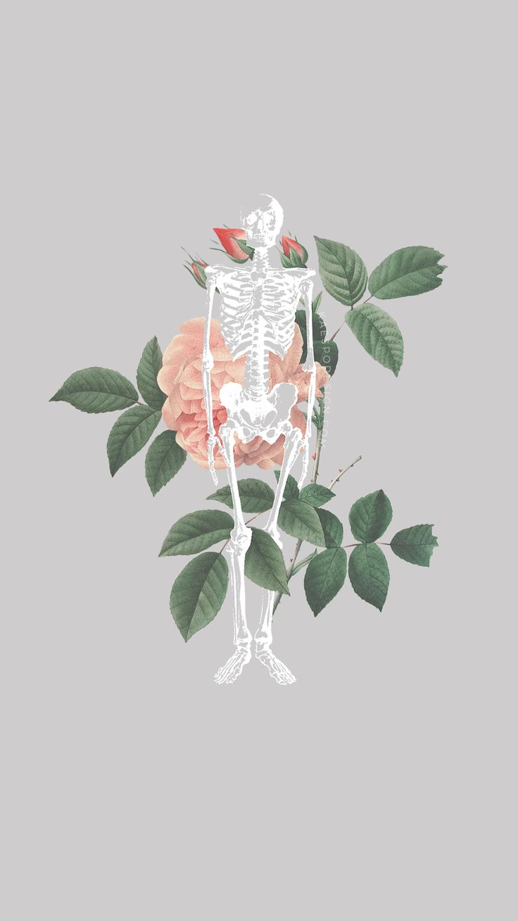Iphone wallpaper tumblr new - Lockscreens No 312 Stay Alive Skeleton Lockscreens Get Em As Notebooks Skeletonsphone Wallpaperstumblr Iphone Wallpaperphone