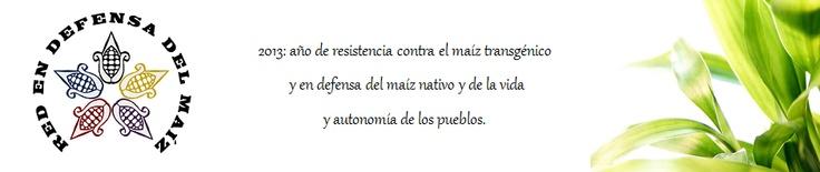Pronunciamiento contra la reforma a la Ley Agraria y por la moratoria de maíz transgénico.