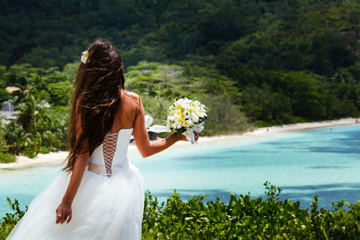 Gorgeous Wedding Snaps - Weddingbids